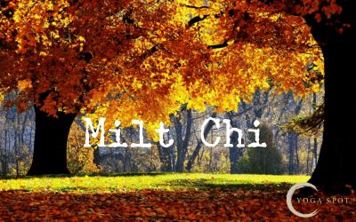 Herfst: Milt-Chi